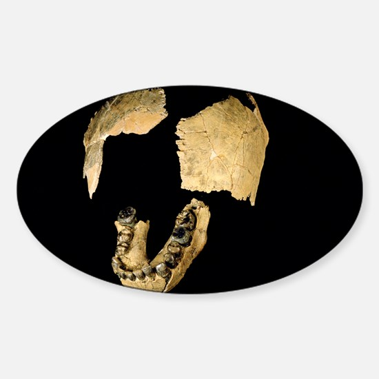 - Sticker (Oval 10 pk)