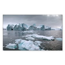 Icebergs - Decal