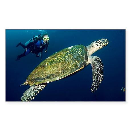 wksbill turtle - Sticker (Rectangle 10 pk)
