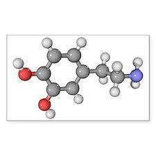 ter molecule - Decal