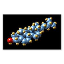 Cholesterol molecule - Decal