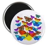 """BUTTERFLIES, BUTTERFLIES! 2.25"""" Magnet (100 pack)"""