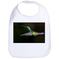 Rainbow Hummingbird Bib