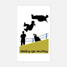 Defy Gravity Vinyl Decal