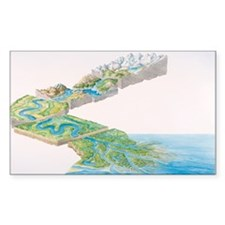 River system - Decal