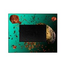 Bacteriophage viruses - Picture Frame