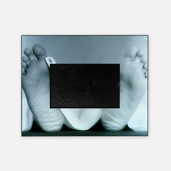 ID tag on cadaver - Picture Frame