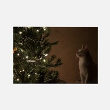 Christmas Cat Rectangle Magnet