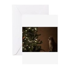 Christmas Cat Greeting Cards (Pk of 20)