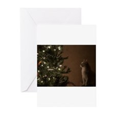 Christmas Cat Greeting Cards (Pk of 10)