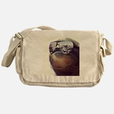 million dollar sloth Messenger Bag