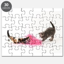 Kittens Playing Puzzle