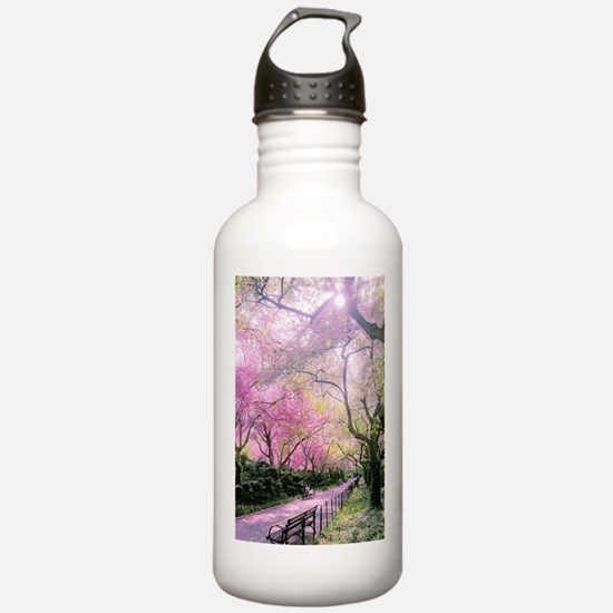 Central Park Water Bottle