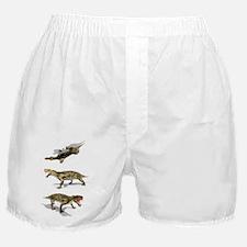 Inostrancevia, artwork - Boxer Shorts