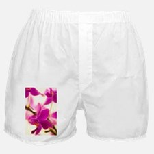 t' - Boxer Shorts