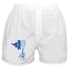 n - Boxer Shorts