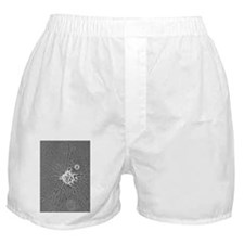 Nerve cell growth - Boxer Shorts
