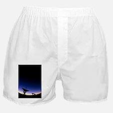 ae - Boxer Shorts