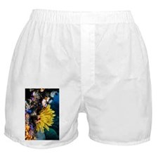 Crinoid on a coral reef - Boxer Shorts
