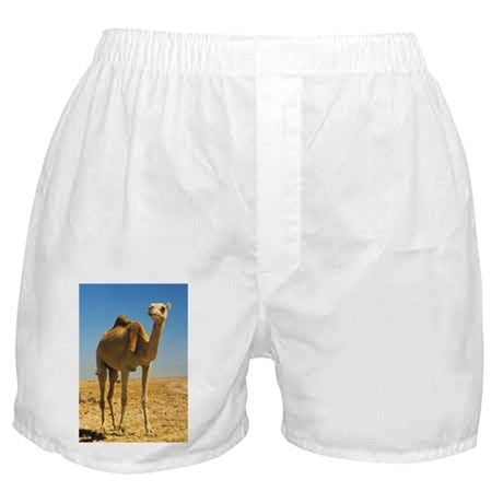 the desert - Boxer Shorts