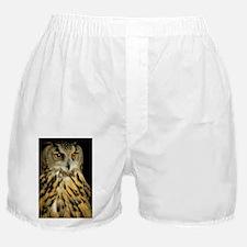 European eagle owl - Boxer Shorts