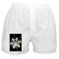 mputers - Boxer Shorts