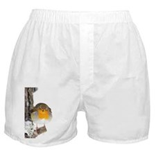 European robin - Boxer Shorts