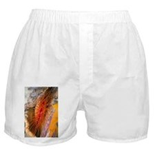 Electric clam - Boxer Shorts