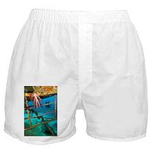 Diver exploring a shipwreck - Boxer Shorts