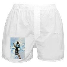 l Space Station - Boxer Shorts
