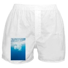 Diver plunging into the sea - Boxer Shorts