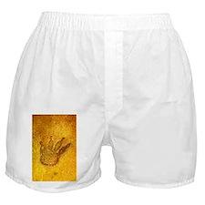 Fossilised dinosaur footprint - Boxer Shorts