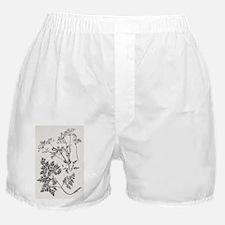 Hemlock, 19th century artwork - Boxer Shorts