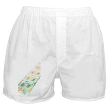 Microprocessor chips - Boxer Shorts