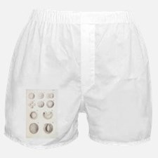 rtwork - Boxer Shorts