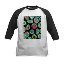 Various pollen grains - Tee