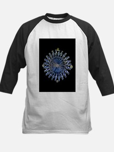 Diatoms, light micrograph - Tee