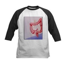 Large intestine - Tee