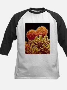 Morning glory pollen - Tee