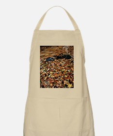 Leaves floating on river water - Apron