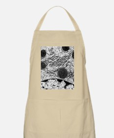 mal cell - Apron