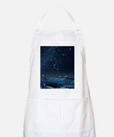Winter sky with Orion constellation - Apron
