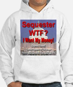 Sequester WTF? I Want My Money! Hoodie