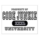 Code Junkie University Small Poster