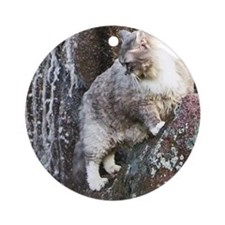 Cat in a Waterfall Ornament (Round)