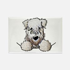 SC Wheaten Pocket Rectangle Magnet