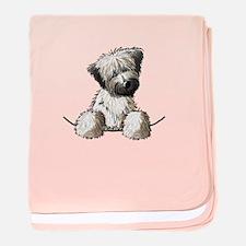 Pocket Wheaten baby blanket
