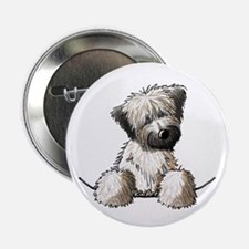 "Pocket Wheaten 2.25"" Button"