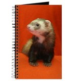 Ferret Journals & Spiral Notebooks