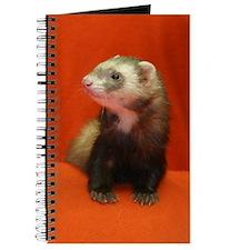 Cute Shelter Journal